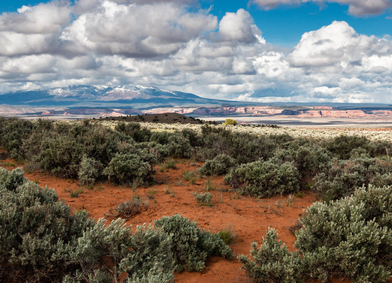 Puffy clouds over Canyonlands National Park.