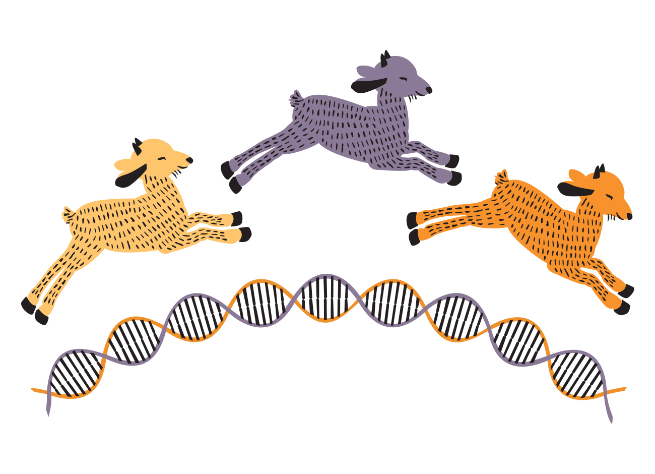 Illustration of goats jumping over strands of DNA.