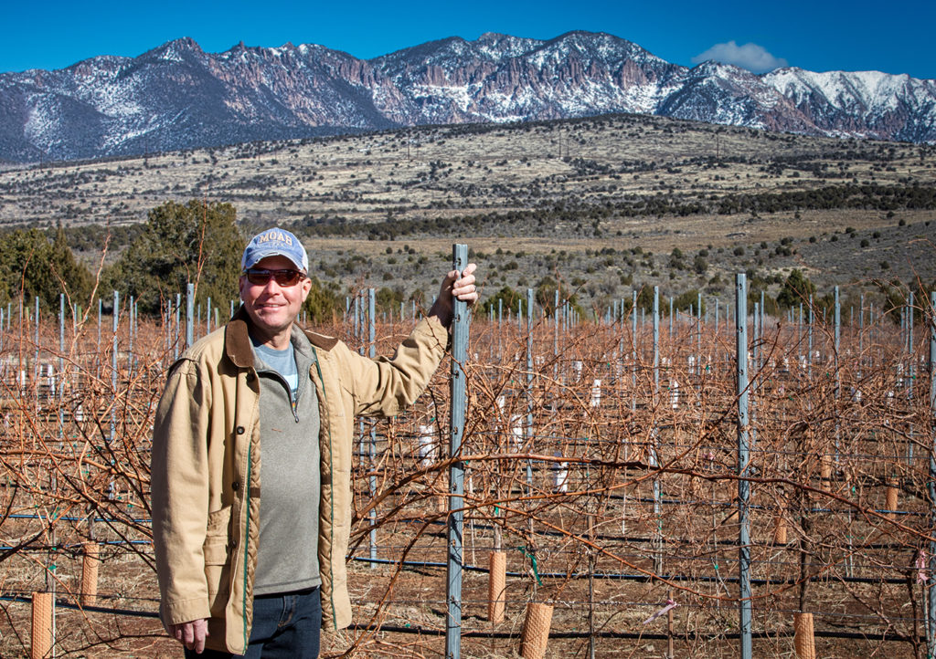 John Delaney, a partner of Mark and Mary Bold, standing in the newest section of the Dammeron Valley Vineyard.