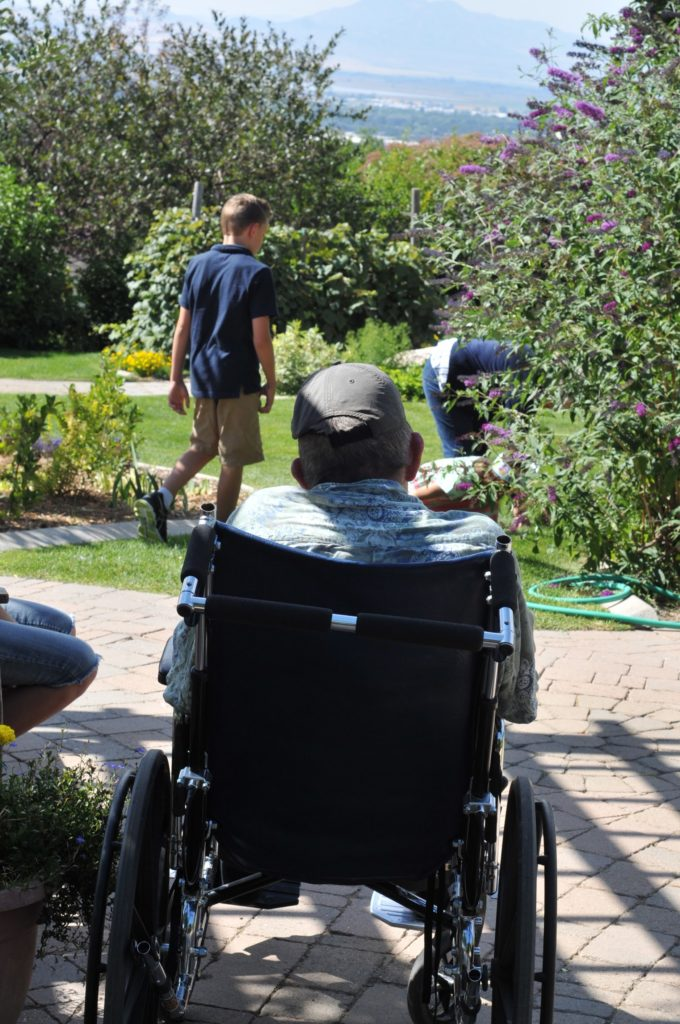 Man in wheelchair looks out at garden.