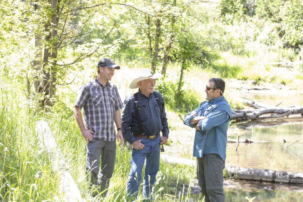 three men stand near a creek, fallen aspen trees dam portions of the waterway