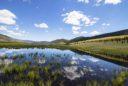 the Pando aspen clone reflected on Fishlake lake.