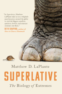 cover of Superlative featuring an image of a mouse next to an elephant