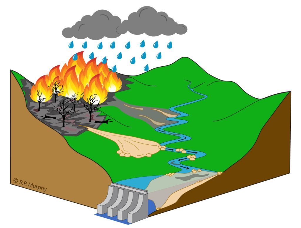 graphic showing how soil erodes and makes its way into downstream waters and infrastructure after fires.