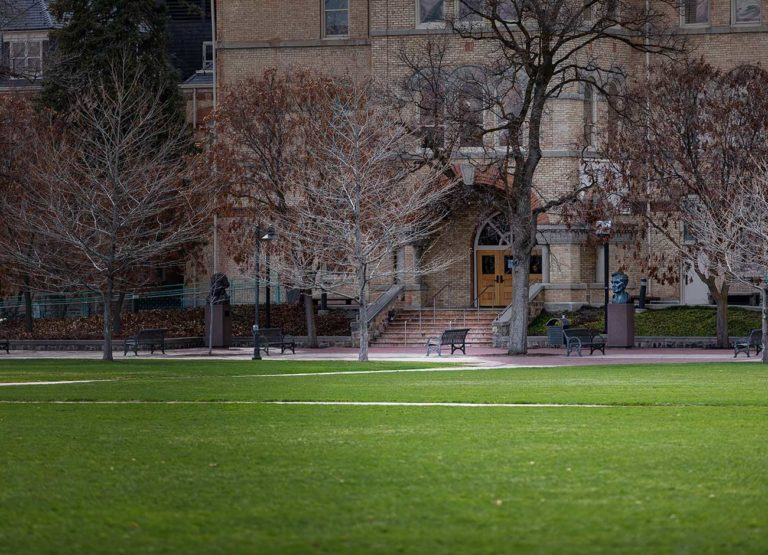 green grass, lonely benches, and a statue of Abe Lincoln.