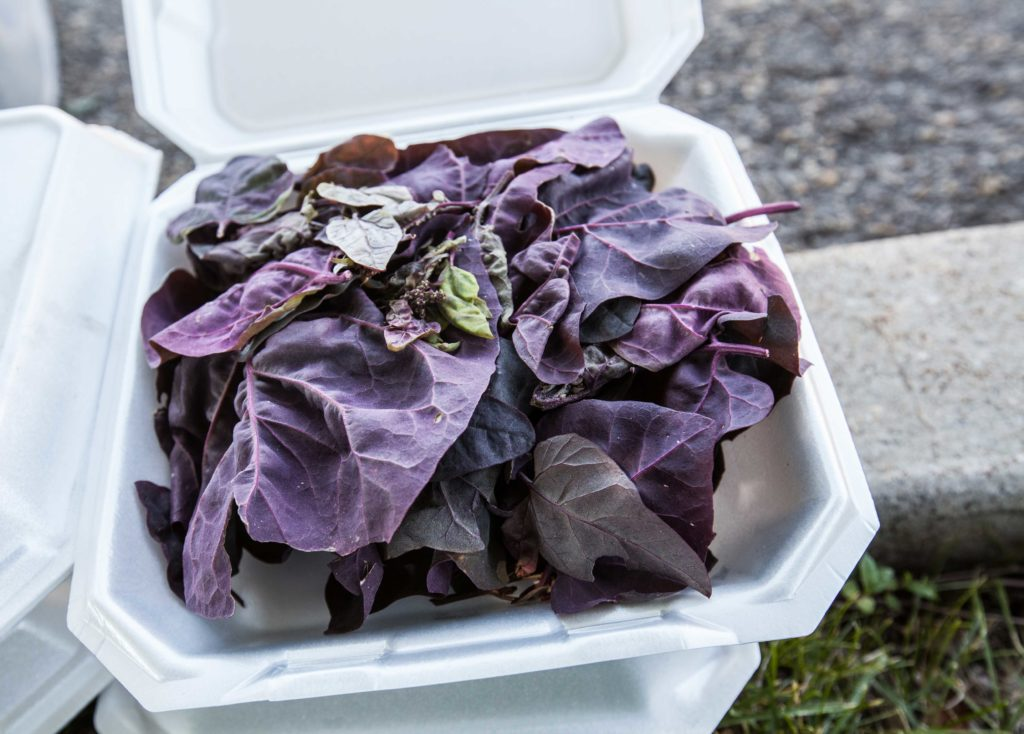 a container of red lettuce