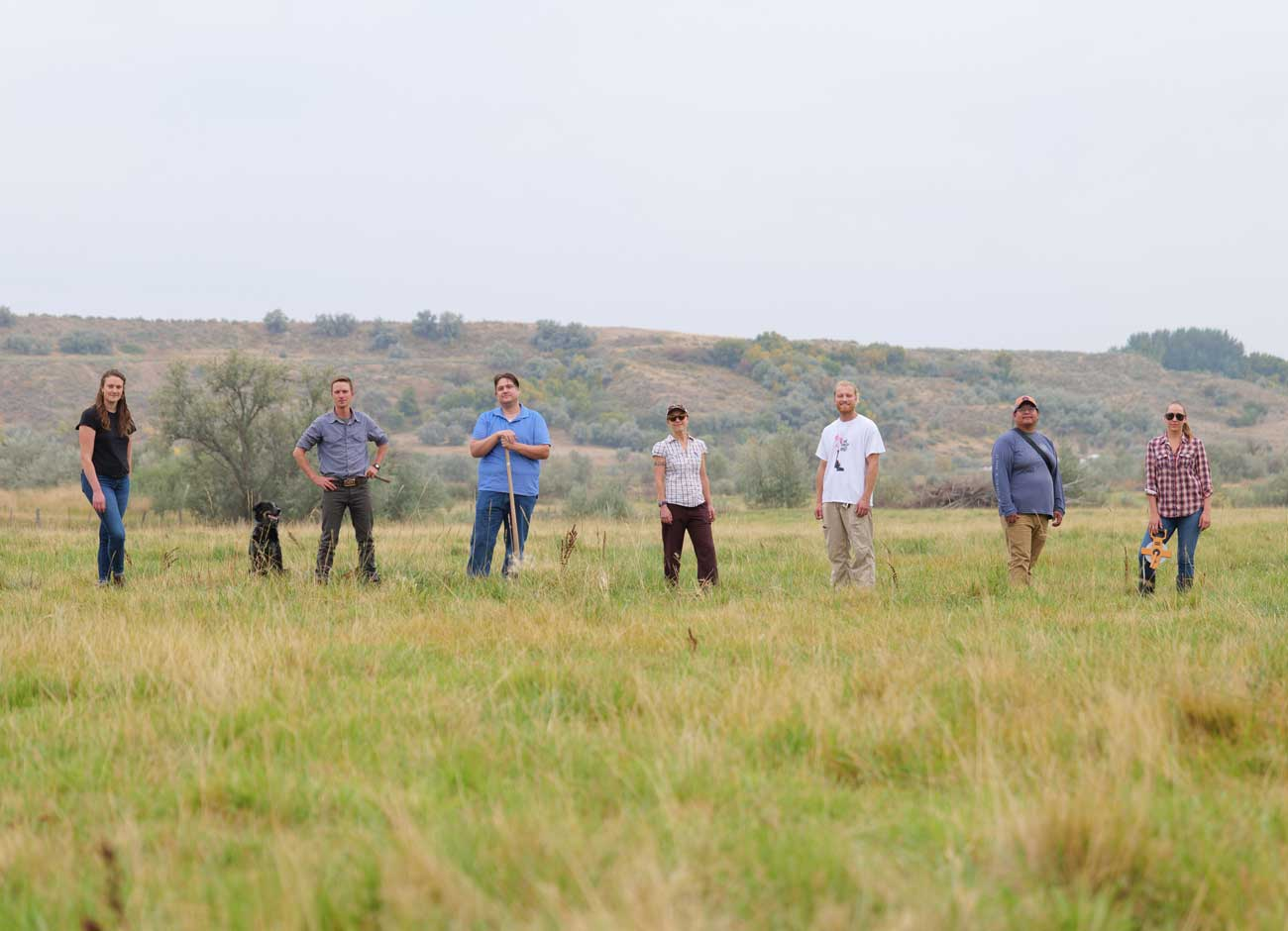 seven researchers stand in a grassy field, the site of the bear river massacre, where they are working with the Shoshone to restore the land to its native habitat