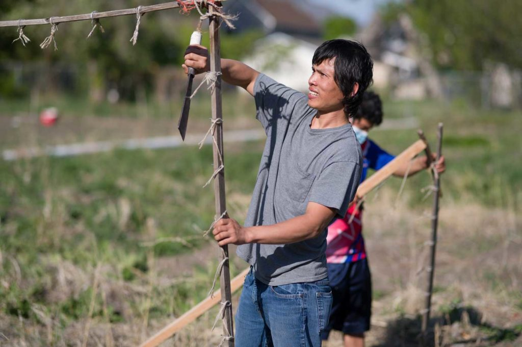 a young Asian man hacks at old ropes on a vegetable frame to prepare for spring gardening