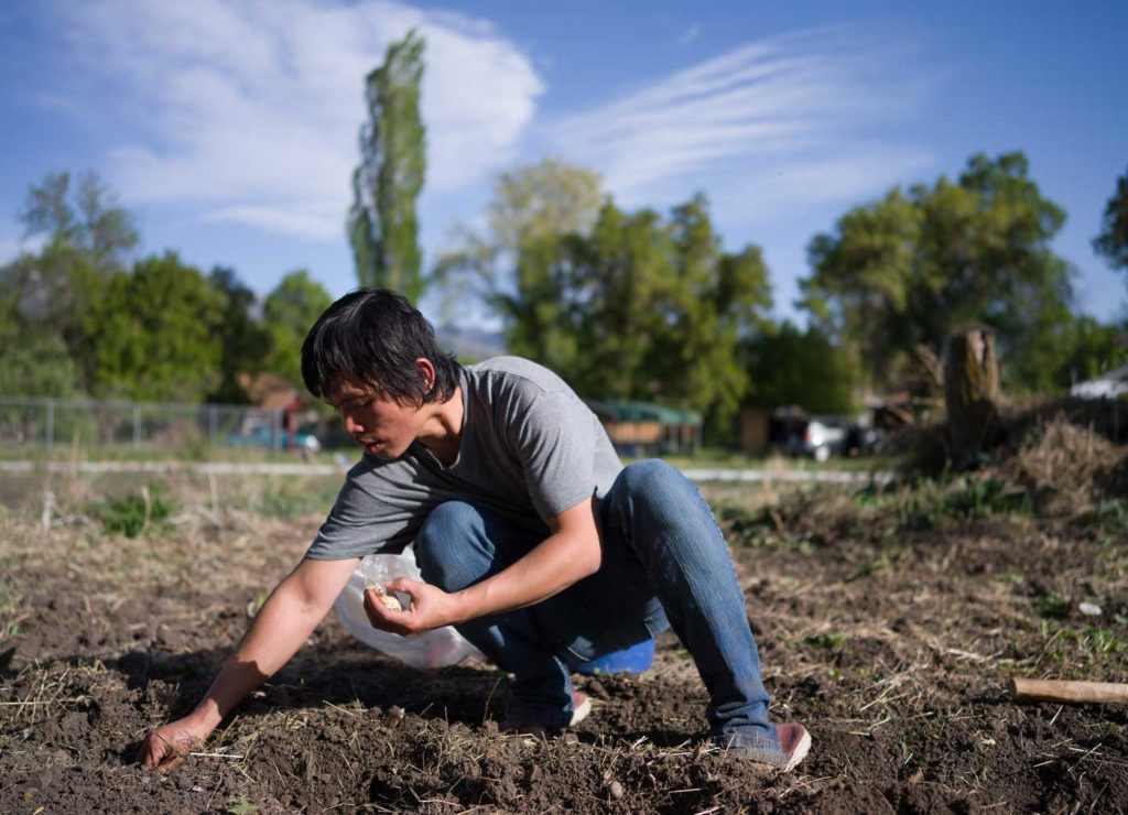 a young Asian man in blue jeans and a gray t-shirt squats on the ground planting seeds under a blue sky